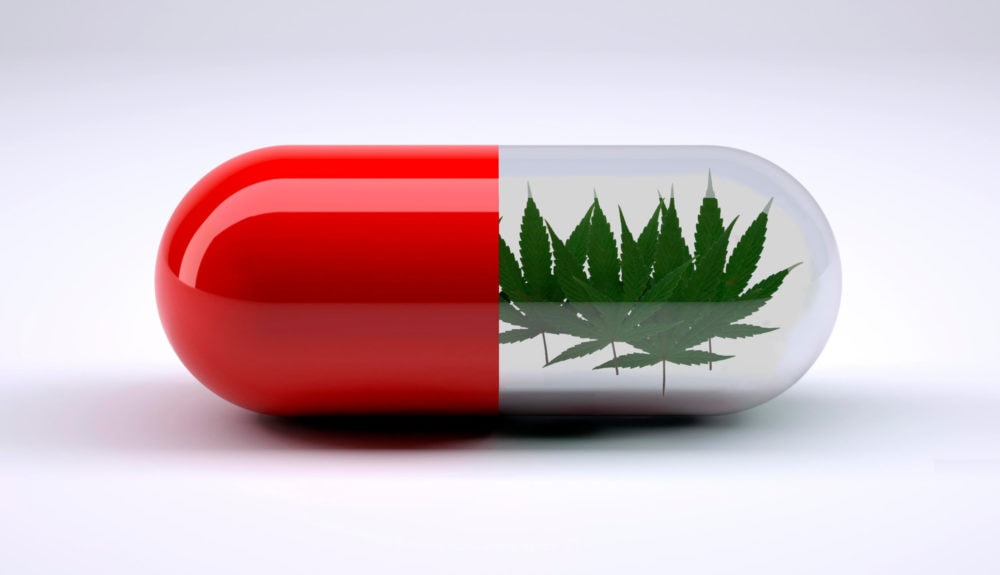 red pill with marijuana leafs inside, 3d illustration